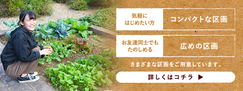 kashisaien_banner_2